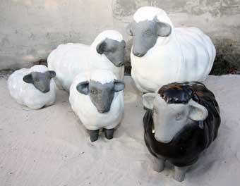 mouton deco jardin mc immo. Black Bedroom Furniture Sets. Home Design Ideas