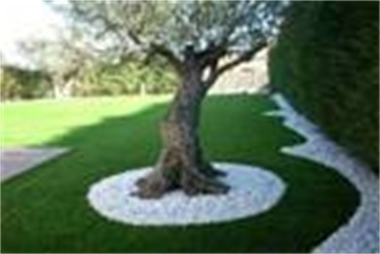 Idee deco parterre jardin mc immo for Idee de parterre exterieur