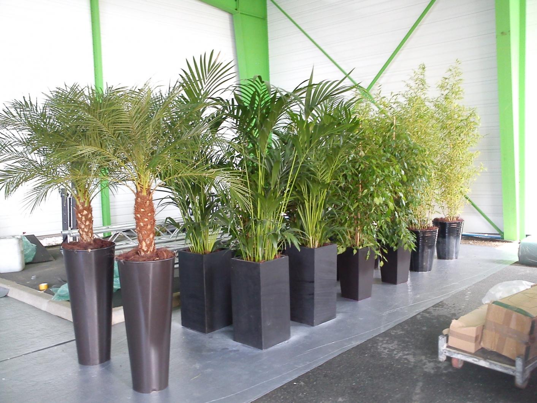 deco plante exterieur mc immo On deco plante exterieur